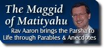 The Maggid of Matityahu